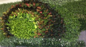 live plants in green wall at airport