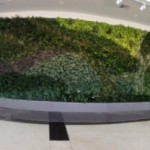 Wide-angle view of Green Wall