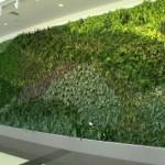 Green Wall Shuttlesworth Birmingham International Airport