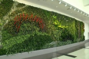 View 2 Completed Green Wall Shuttlesworth Birmingham International Airport