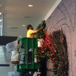 living wall plant installation